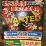 フマキラー特別協賛『大昆虫展 in 東京スカイツリータウン®』 キケンがい虫スタンプラリー