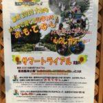 """""""東京2020大会を花でおもてなし""""葛西臨海公園ひまわりロードプロジェクト トライアル展示(2019年)"""